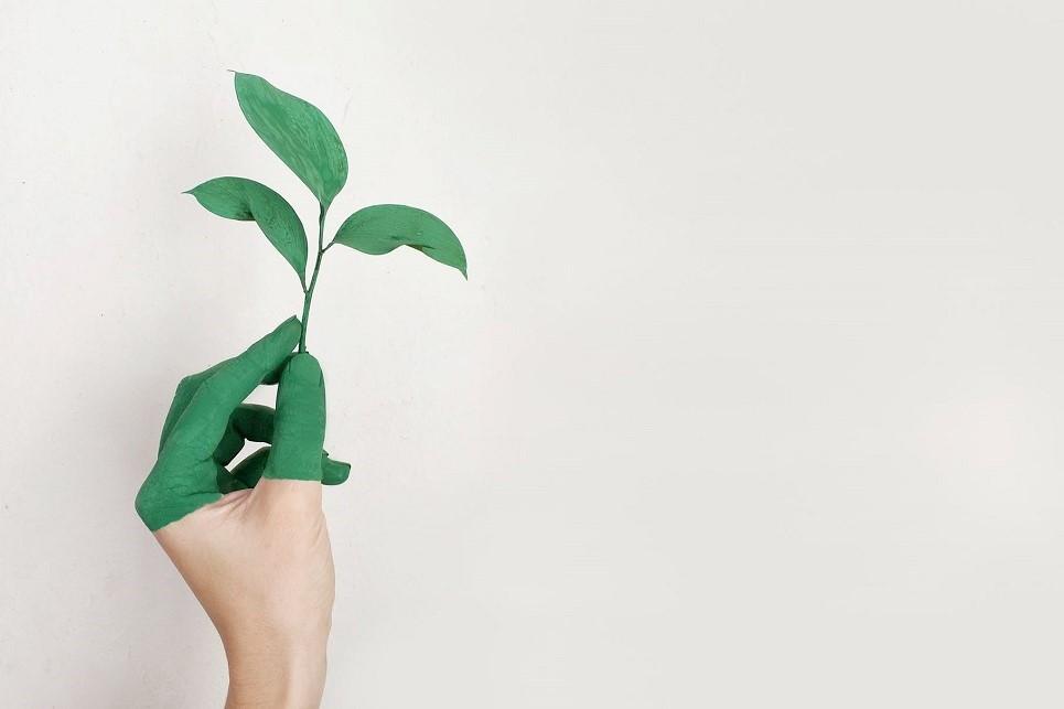 Nachhaltigkeit in der Buchbranche